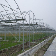 Hot DIP Galvanized Steel Pipe for Warmhouse and Greenhouse