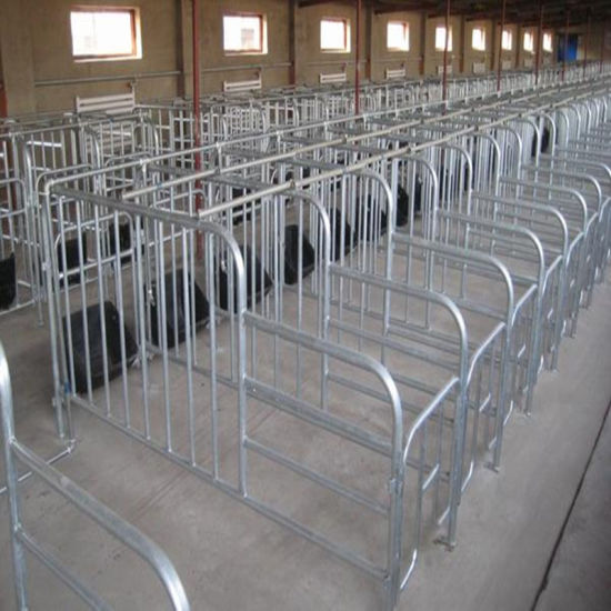 Pig Industry Equipment/Pig Breeding Equipment/ Sow Crate with High Quality